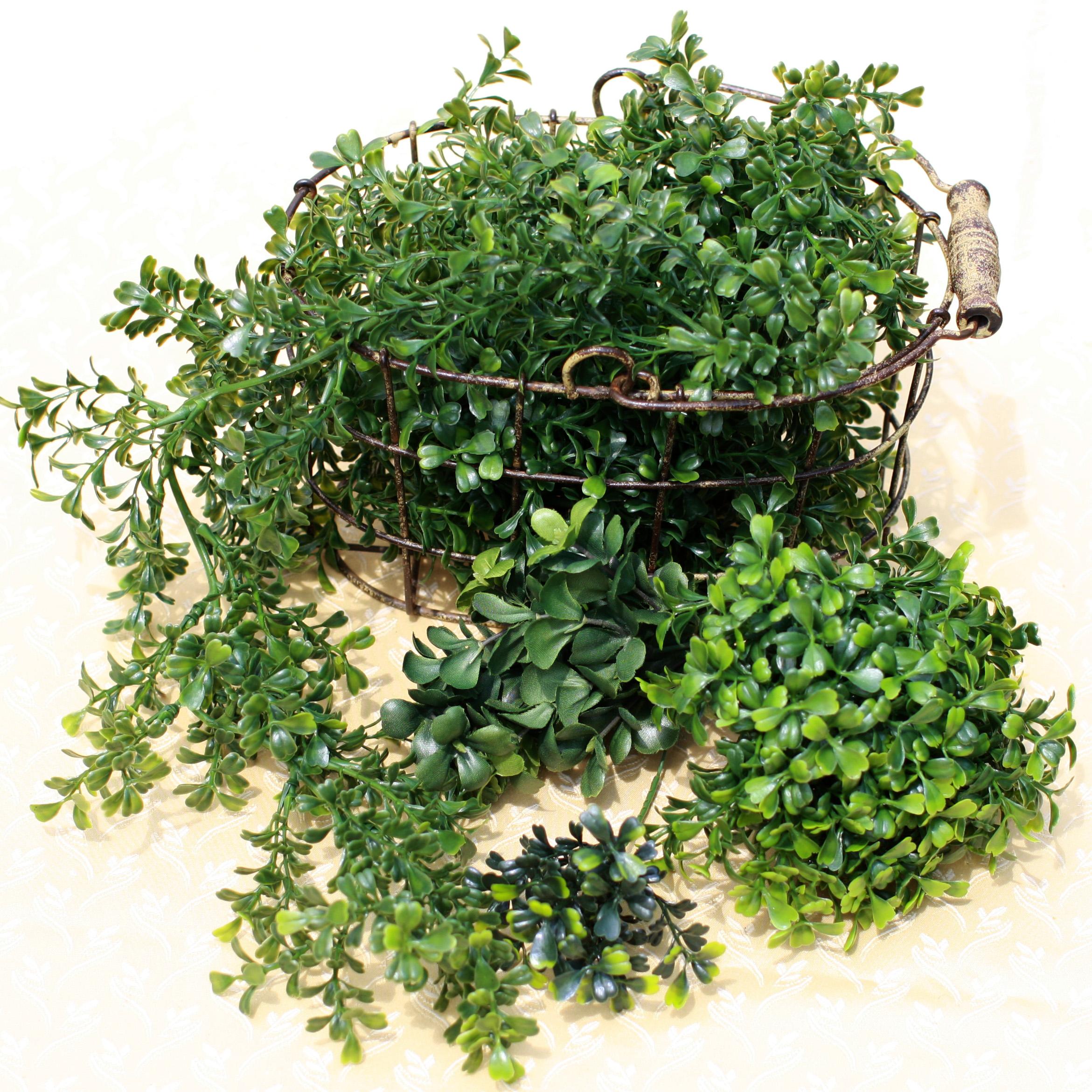 Decorative Greens